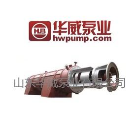 华威 熔盐泵 轴流泵ryb4000-5