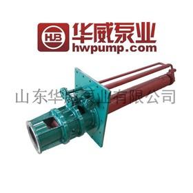华威 熔盐泵 脱硫液下泵 TLY60-218