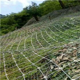 供应边坡专用主动拦石防护网厂家型号