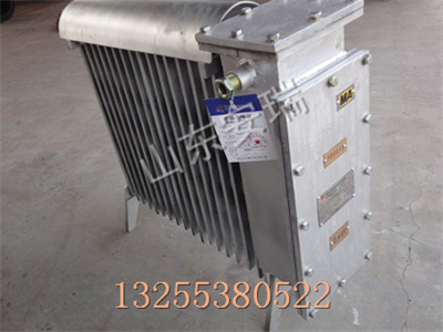 2kw矿用防爆取暖器,RB2000防爆取暖器厂家