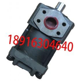 供应NT5-G80F直齿共轭齿轮泵