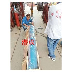 天津30KW深井潜水泵厂家,人们夸赞的深井泵厂家潜成