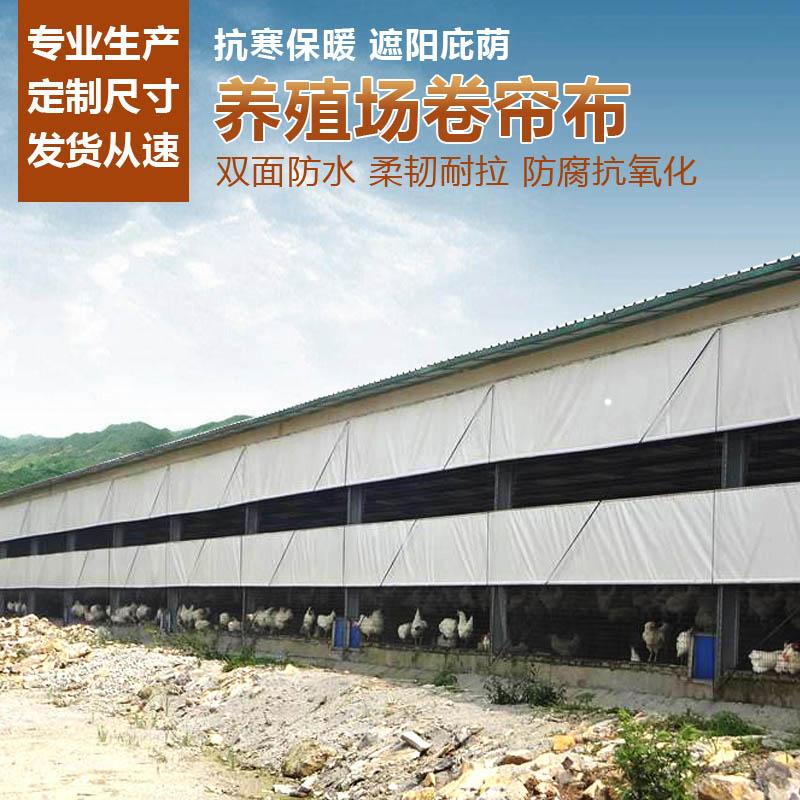 养殖场卷帘布直销-定做防水挡风猪场卷帘布批发生产