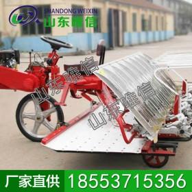 4行手扶拖拉机配套水稻插秧机 水稻插秧机供应 农用种植机械