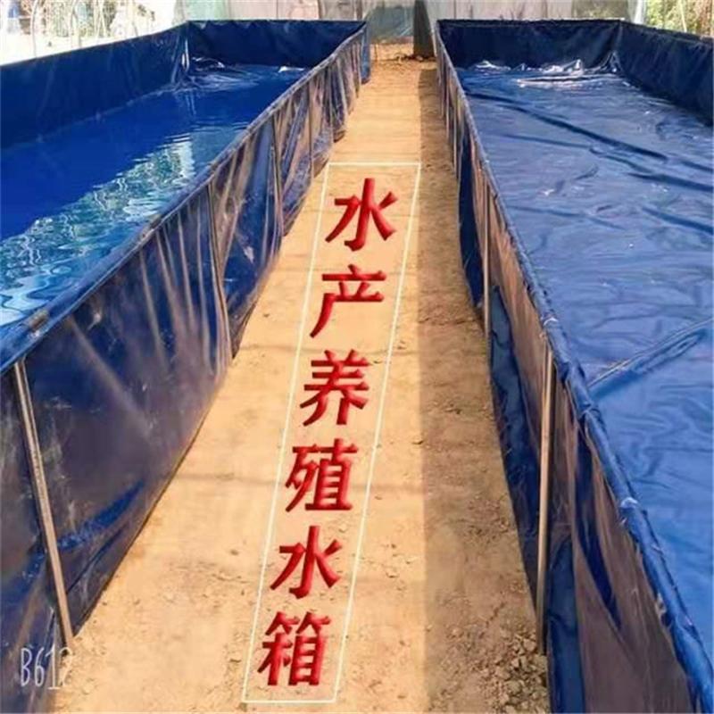 厂家供应耐磨养殖帆布水池-定做鱼虾池 龟池生产批发