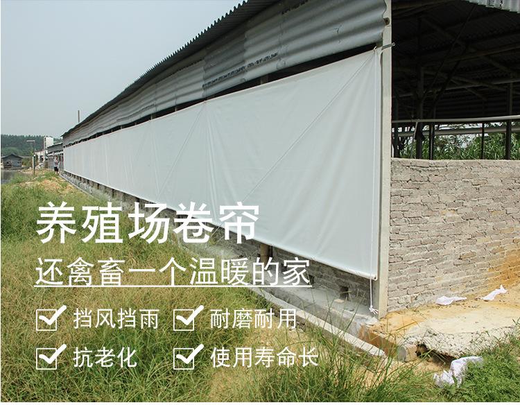 牛棚卷帘布定做-防水挡风猪场卷帘布生产批发