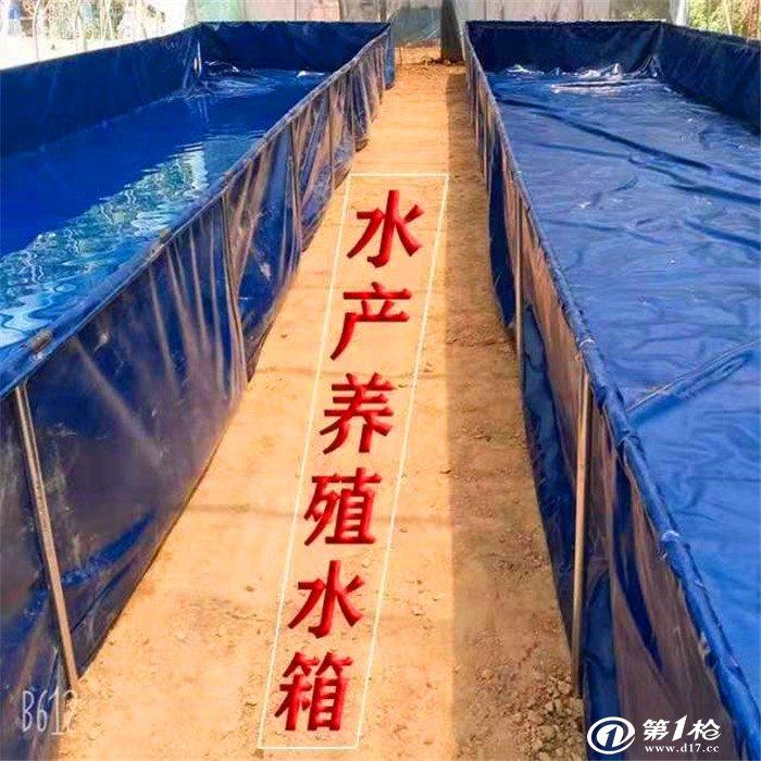 养殖帆布水池厂家供应-pvc刀刮布水池 养殖鱼虾池定做