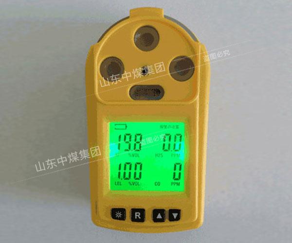 多参数气体检测仪参数,多参数气体检测仪厂家