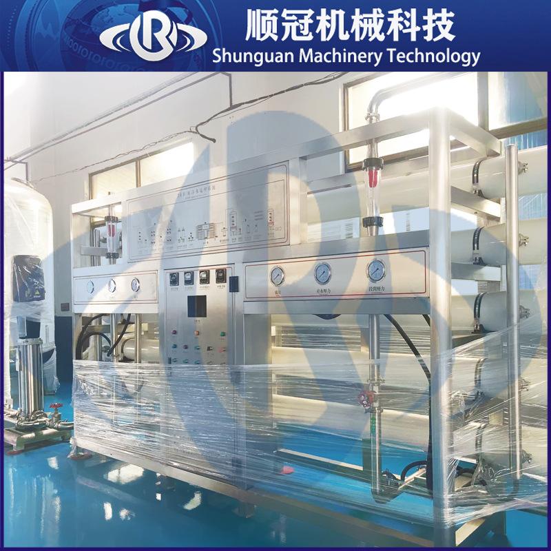 纯净水设备可定制38T双级反渗透纯水处理设备大型日化食品工厂